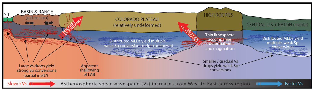 Depth and strength of the lithosphere-asthenosphere transition across the Southwestern United States