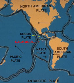 Tectonic Plates Moving Again Will South America Split Away From - Tectonic map us