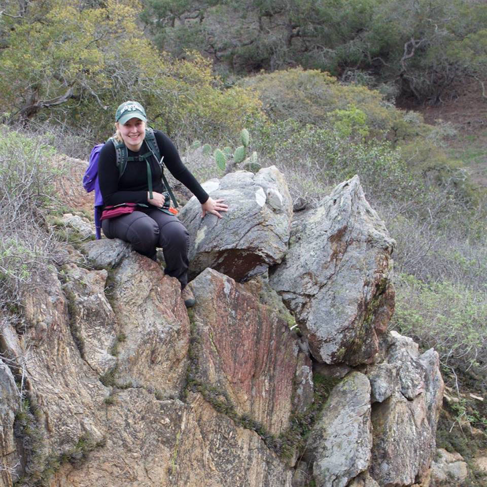 doctoral thesis geology Dissertations & theses internal page links: geology of argosy creek and adjacent areas  phd degree dissertations & theses resources.