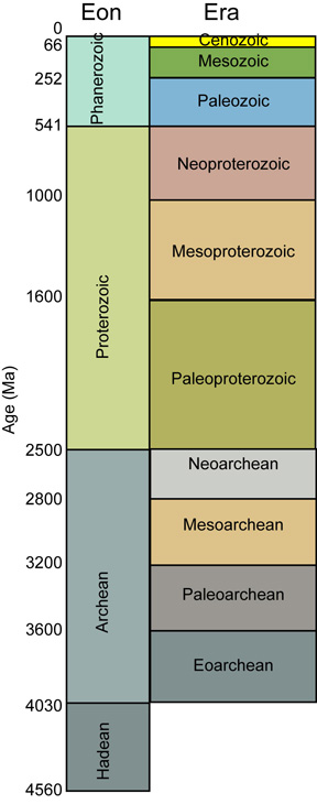 Fossil Record Definition