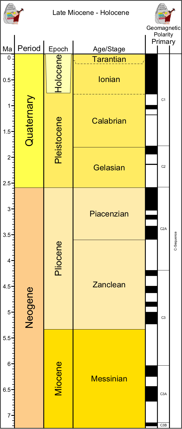 the possible causes of the australian megafauna extinctions at the end of the pleistocene How did 90% of large australian ice age animals go  ice age megafauna that died out towards the end of  the causes of late pleistocene extinctions on the.
